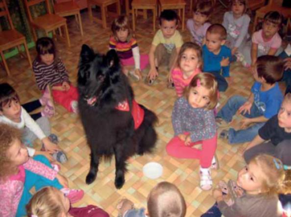 Volt egyszer egy terápiás kutya